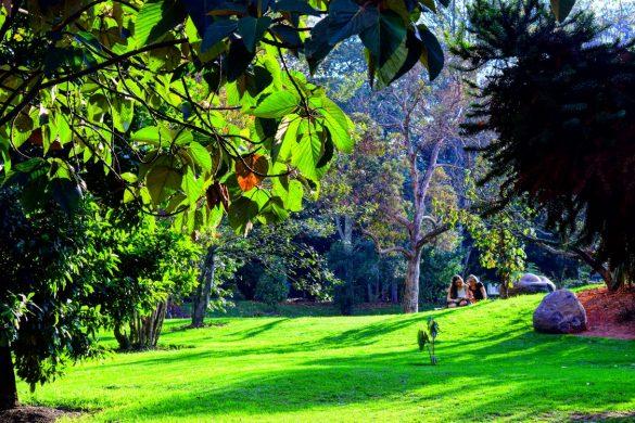 Instagram favoriet - Colombia - Botanische tuin Bogotá
