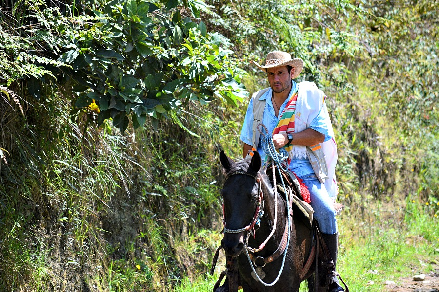Paardrijden in Valle de Cocora Colombia