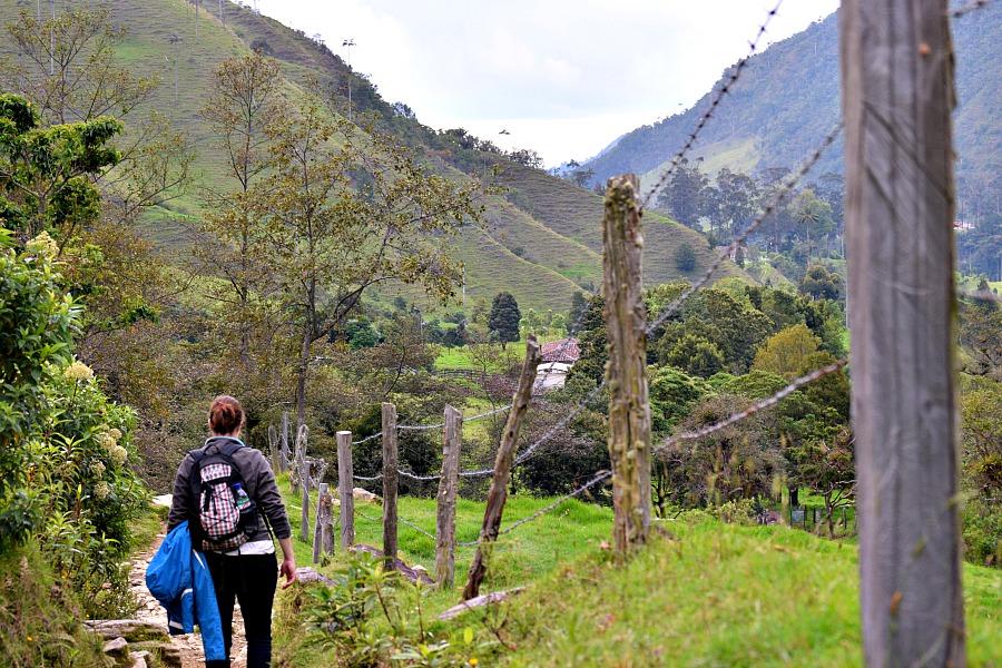 Hiken in Valle de Cocora ColombiaHiken in Valle de Cocora Colombia