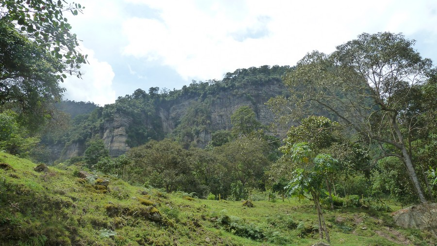Chicaque