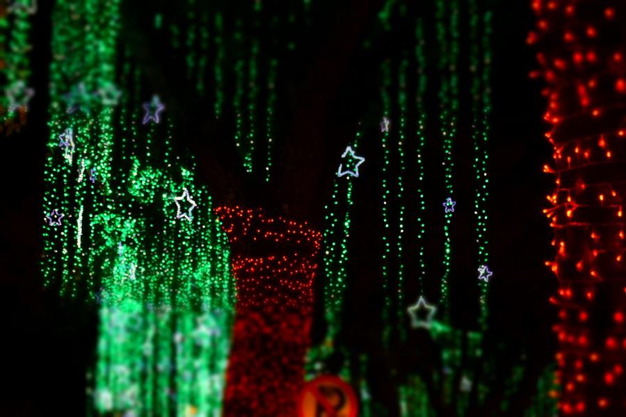 Kerst in Bogotá