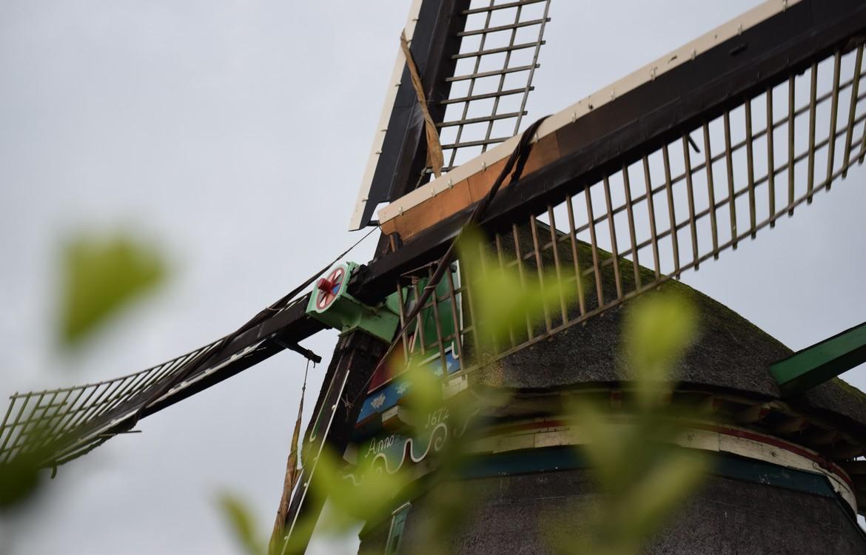De Zaanse Schans: Nederland op zijn mooist