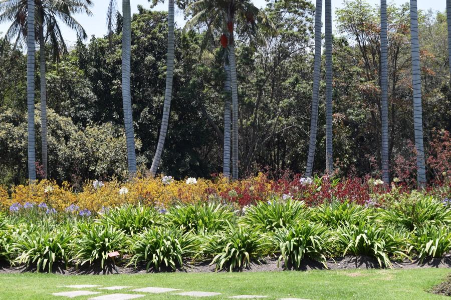 Terugblik op maart 2016 - Botanische Tuin Bogotá