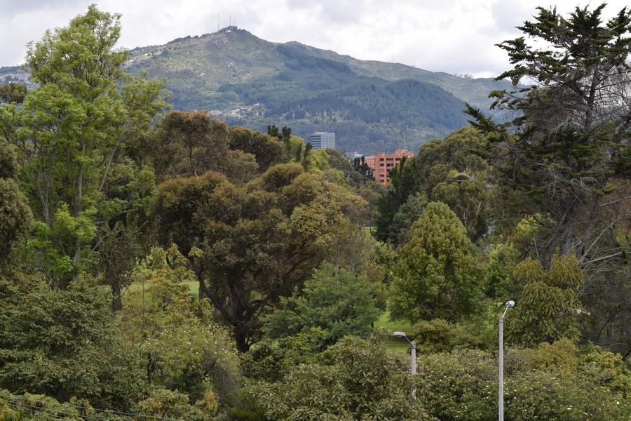 Wonen in Bogotá