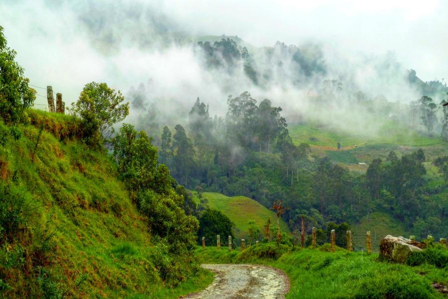 Colombia in kleur - groen - wandelen