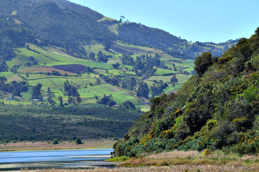 Het meer van Neusa: natuur en relaxen