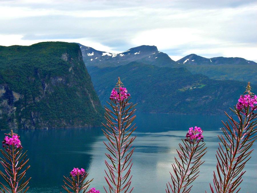 Road trip Noorwegen