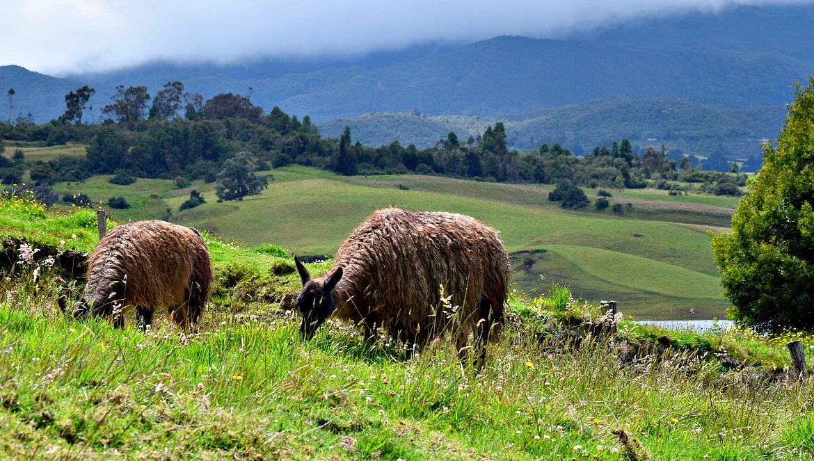 Colombia off the beaten track