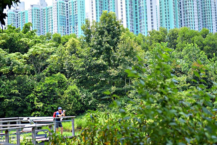 Hong Kong Wetland Park wandelen