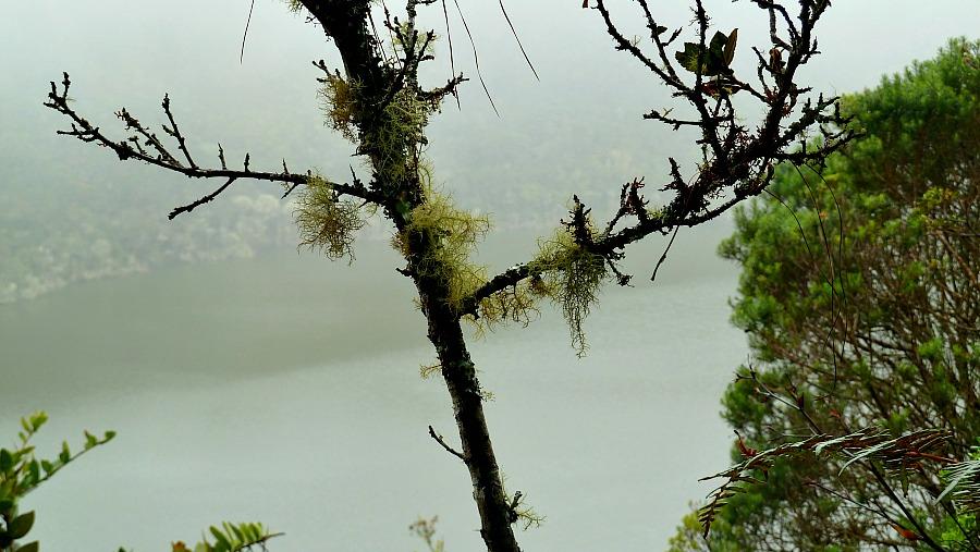 Laguna de Guatavita Colombia: El Dorado