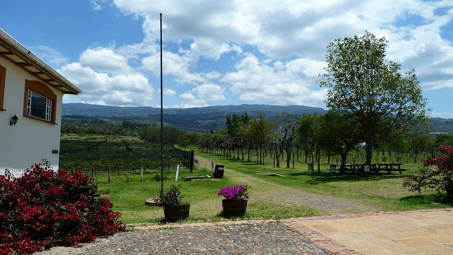 Wijngaard Villa de Leyva Colombia