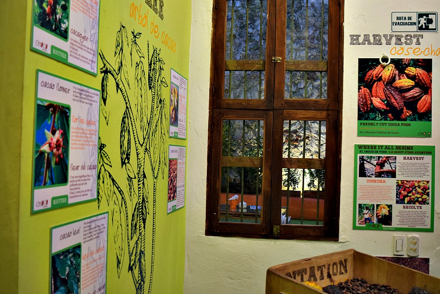 Chocolade museum Cartagena Colombia