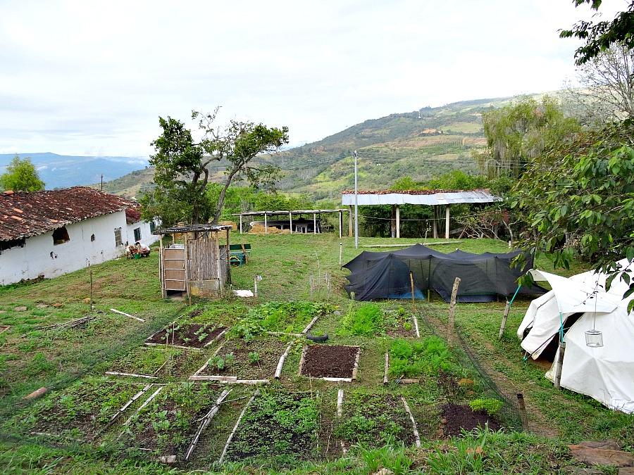 La Pacha Hostel San Gil
