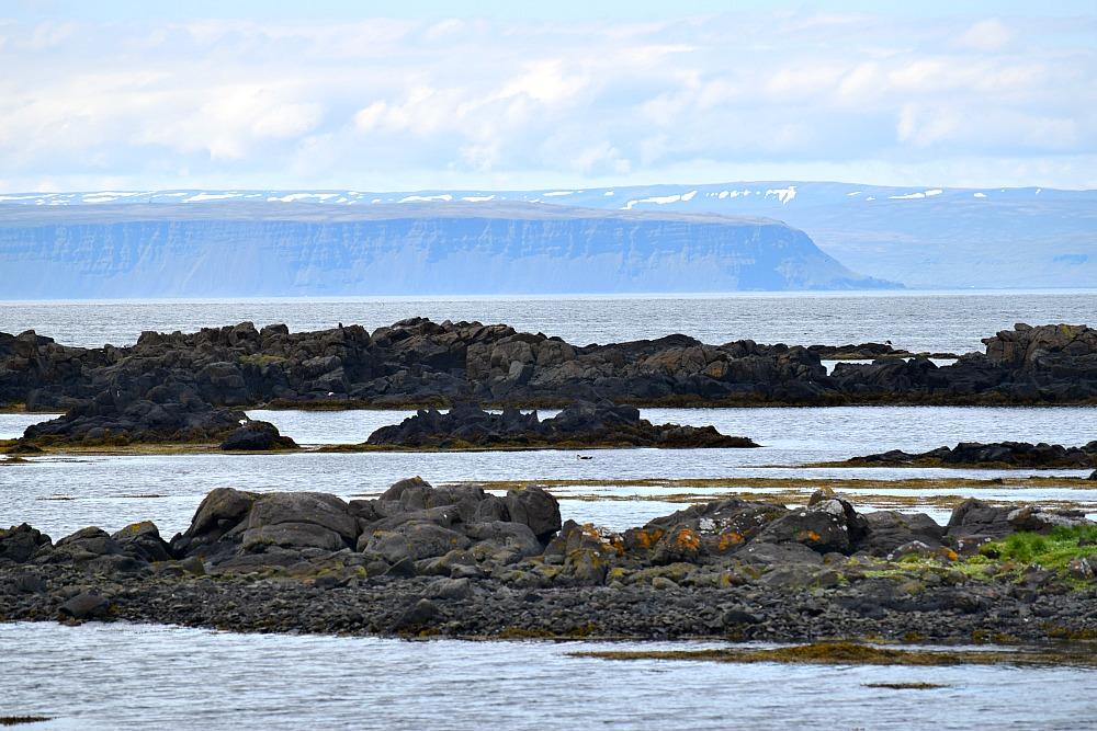 IJsland - Illugastaðir6