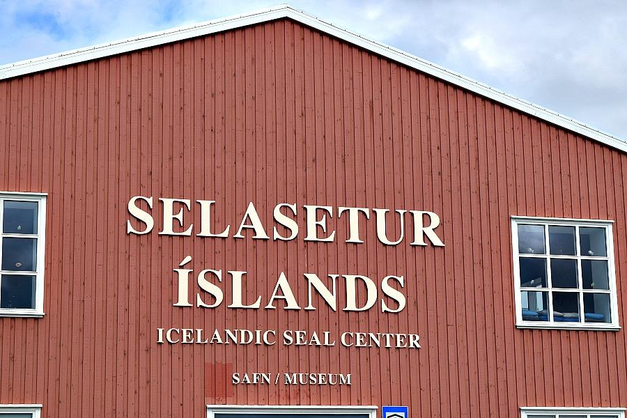 Iceland Seal Center