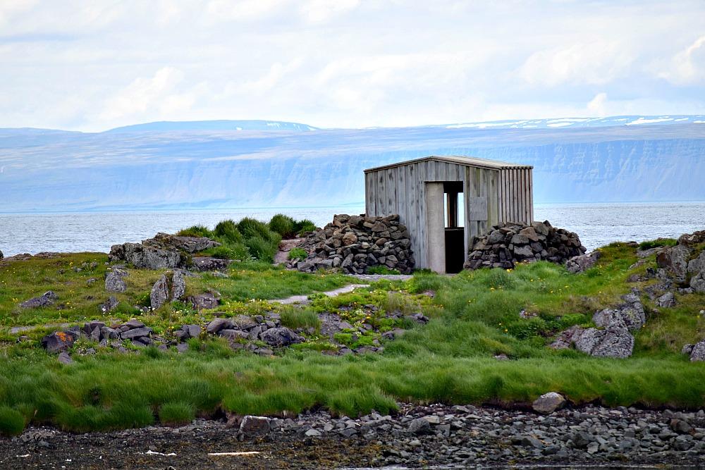 Zeehonden in IJsland- Illugastaðir