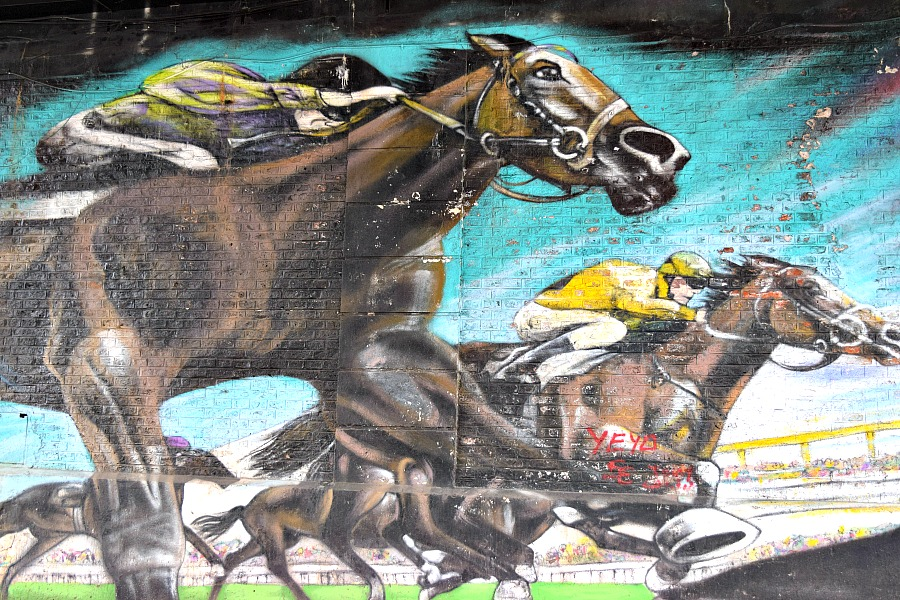 Buenos Aires - muurschildering Paleromo