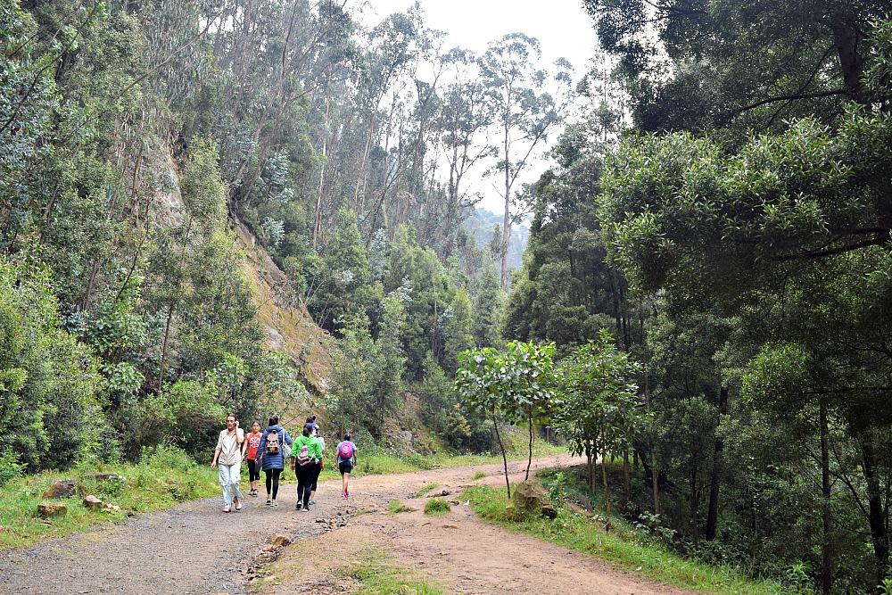 Quebrada la Vieja Bogotá Colombia