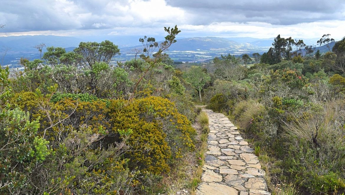 Buiten de gebaande paden Colombia - Parque Pionono - featured