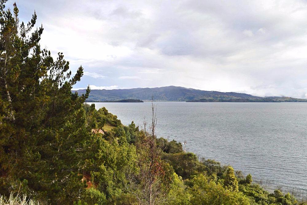 Groene bestemming- Lago de Tota Colombia - het foute bos