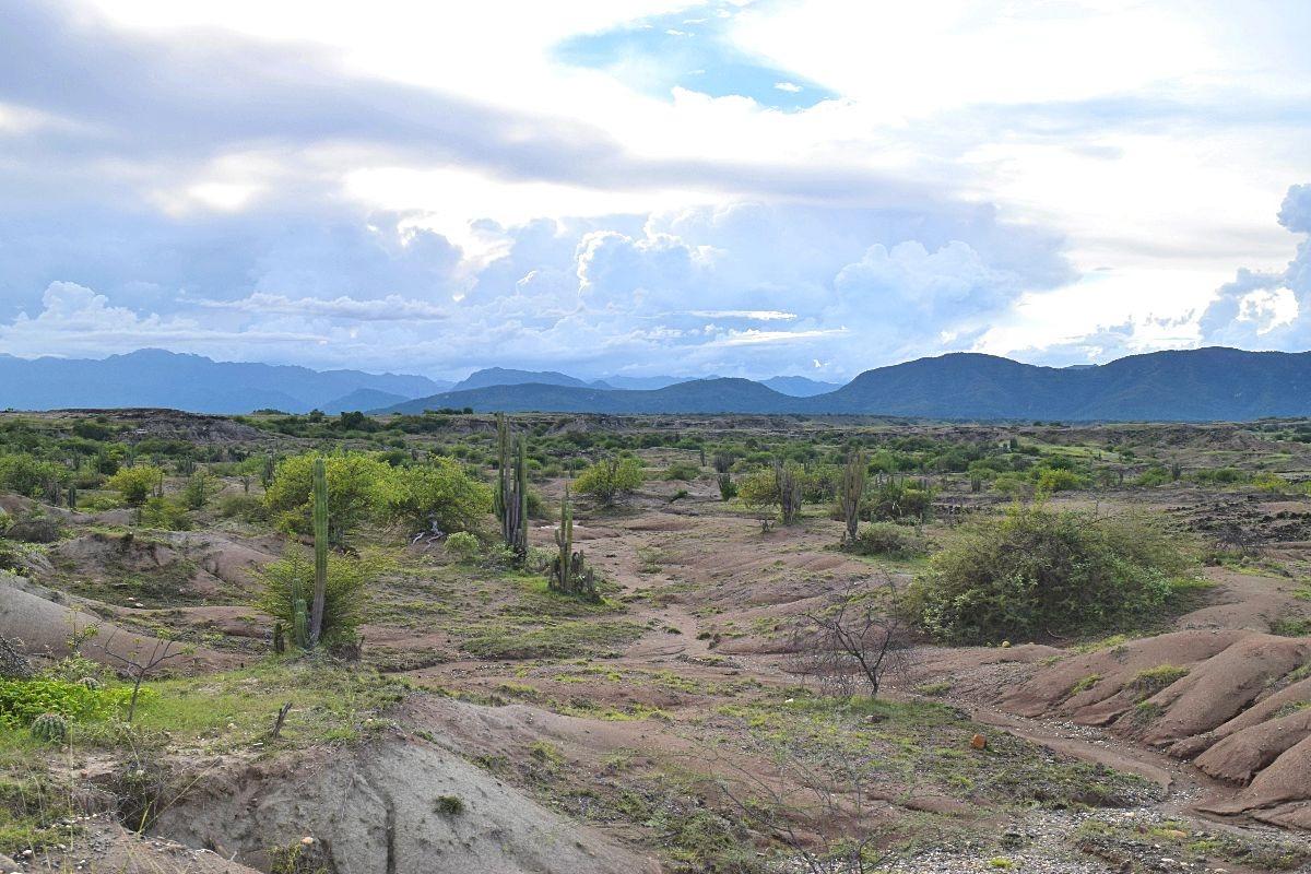 Grijze gebied Tatacoa woestijn Colombia