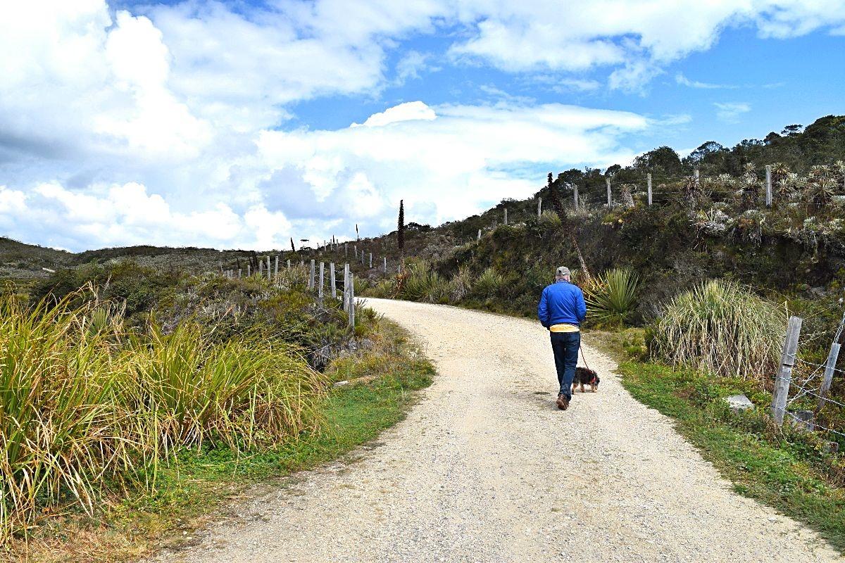 Ouders op bezoek in Colombia - wandelen door páramo