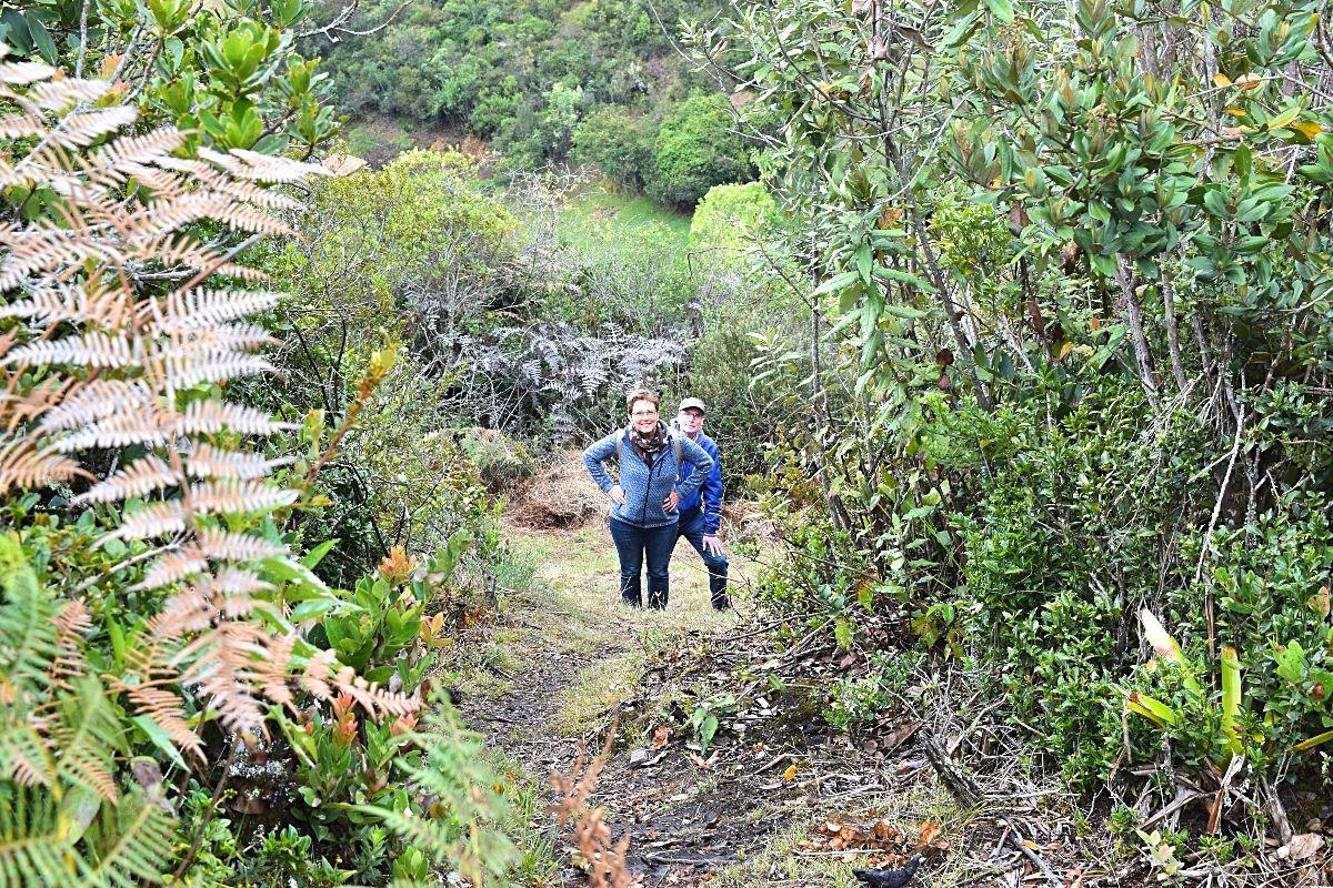 Ouders op bezoek in Colombia - wandelen in de bergen