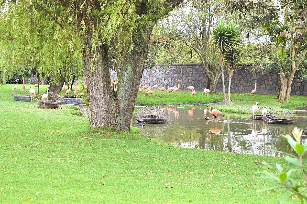 Parque Jaime Duque dagtrip Bogotá Colombia