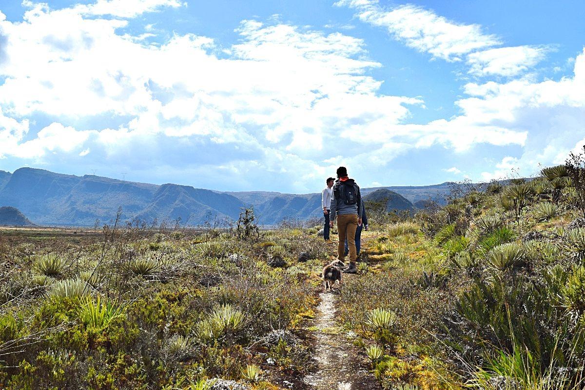 Natuurpark Vista Hermosa páramo Colombia