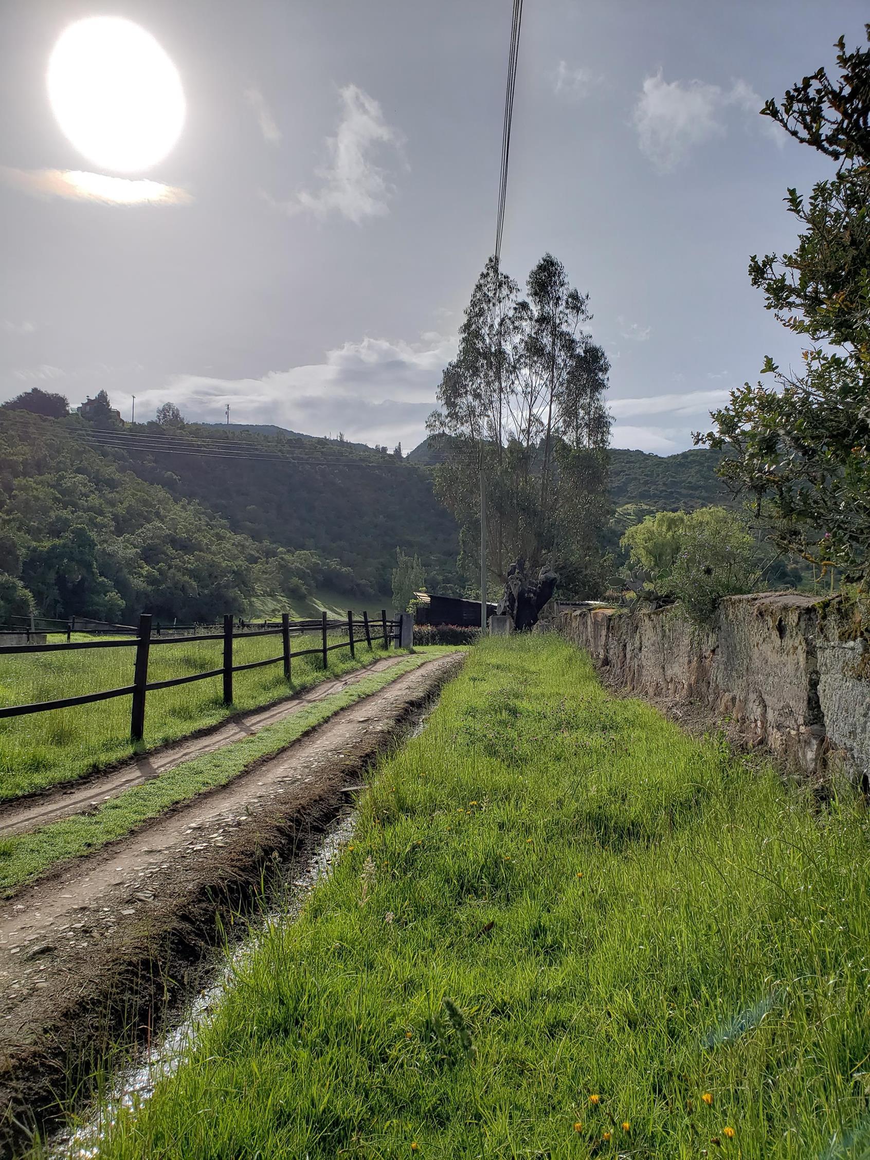 Zon op het platteland
