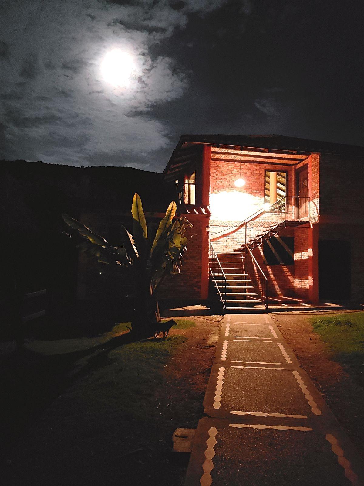 Nachtelijke wandeling