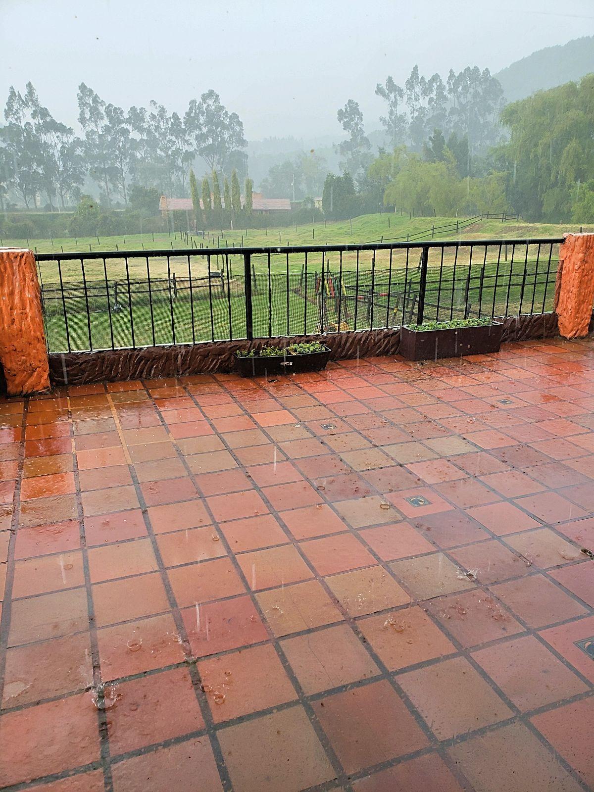 Regen Colombia