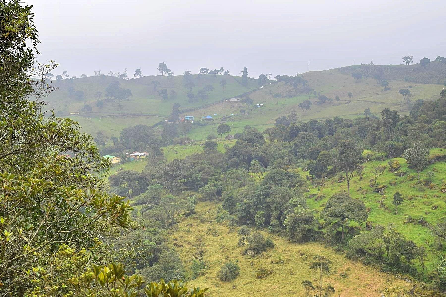 Uitzicht Colombia