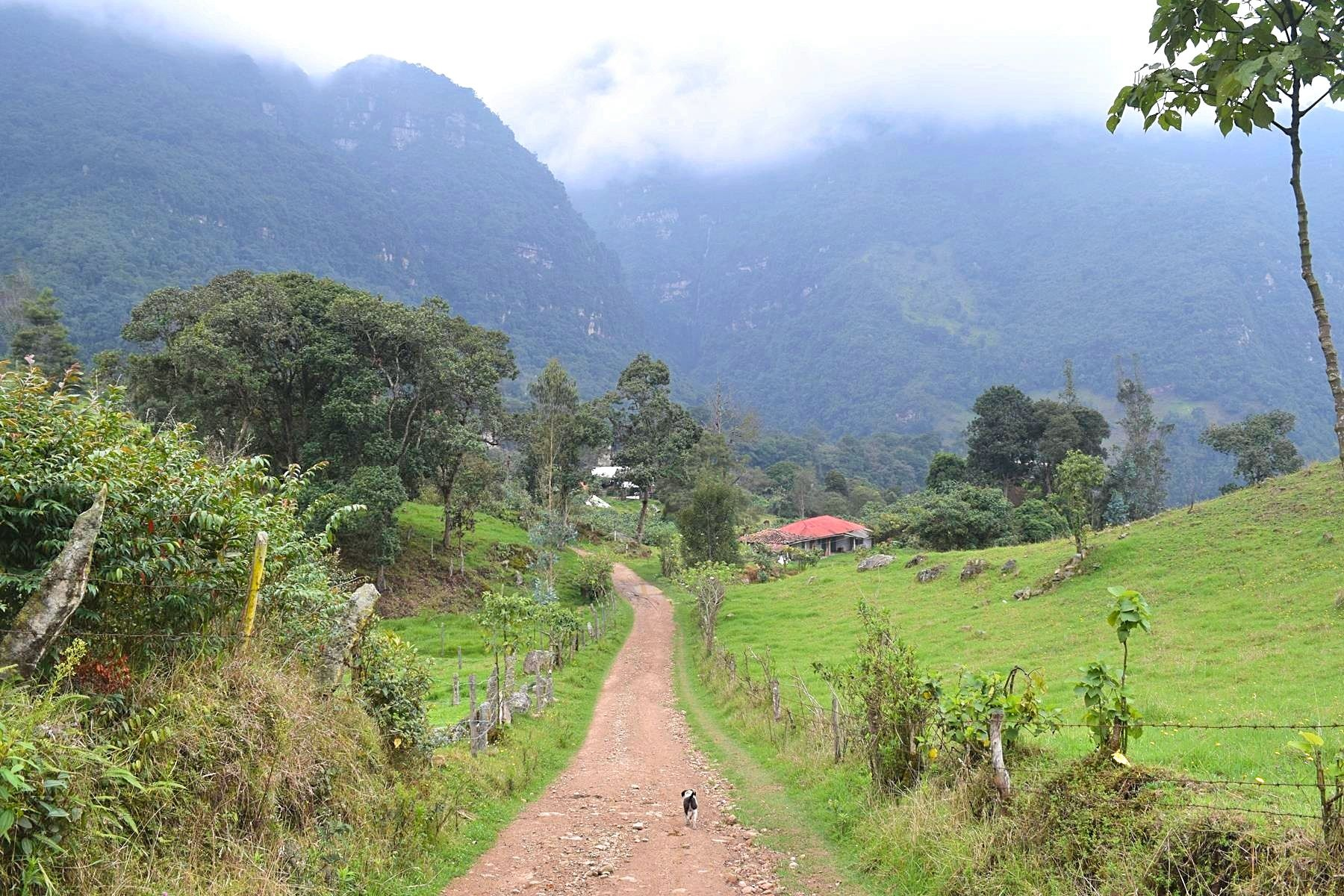 Wandelen in Colombia