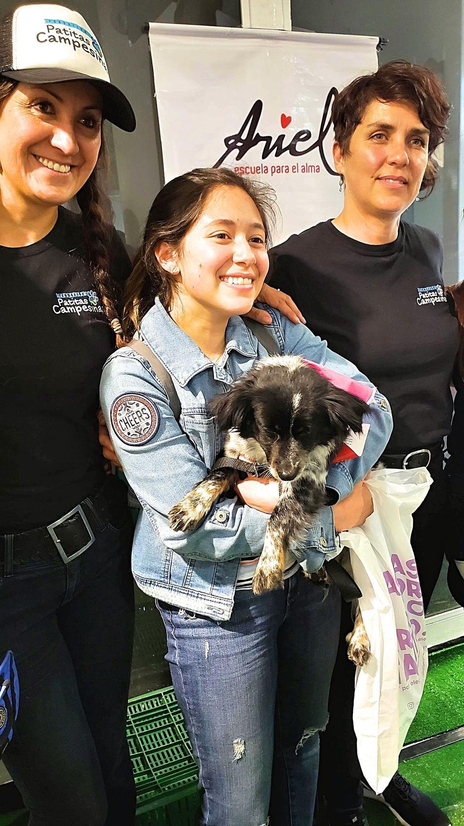 Hond adopteren Colombia Bogotá vrijwilligerswerk doen
