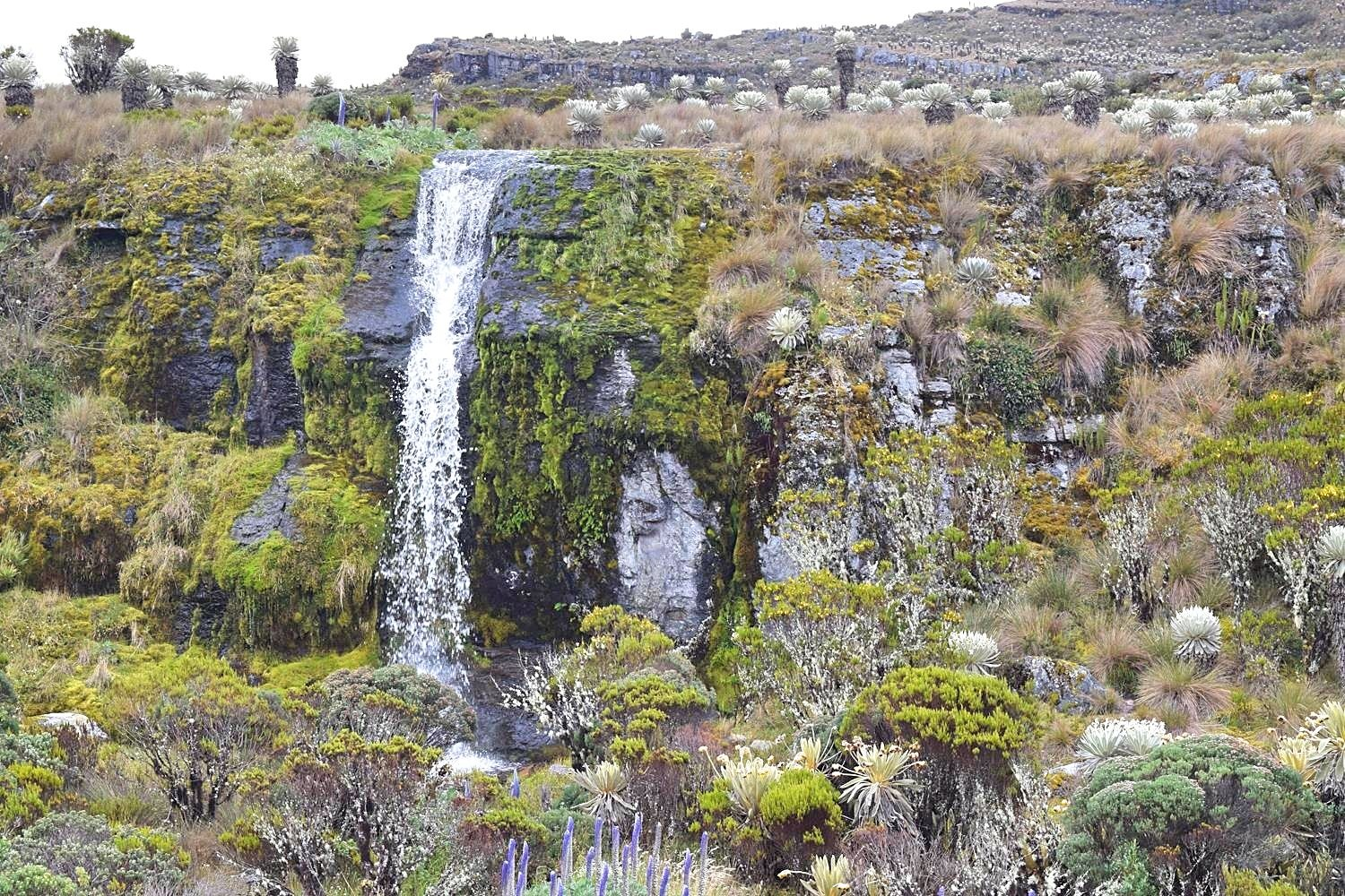 Waterval Colombia Mongui