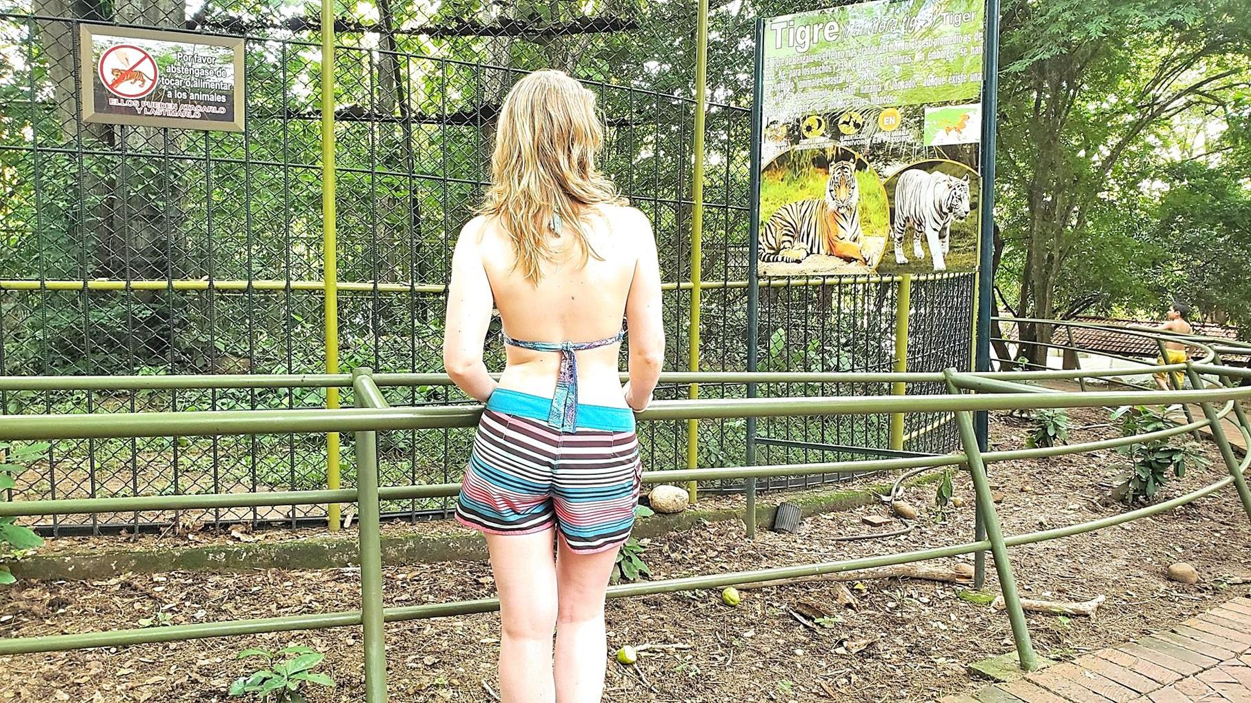 Piscilago Colombia dierentuin