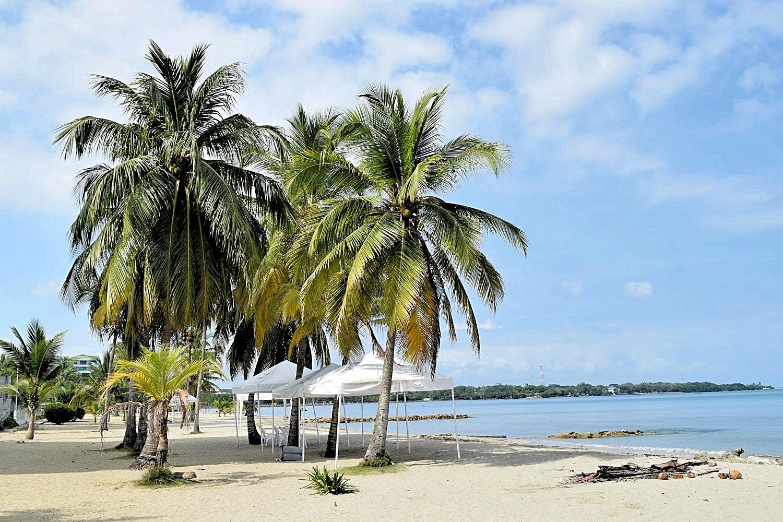 Palmbomen strand Colombia Coveñas