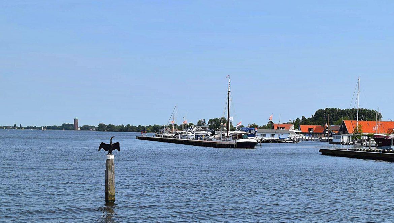 Reizen vanuit een hoogrisicoland naar Nederland tijdens de Coronacrsisis