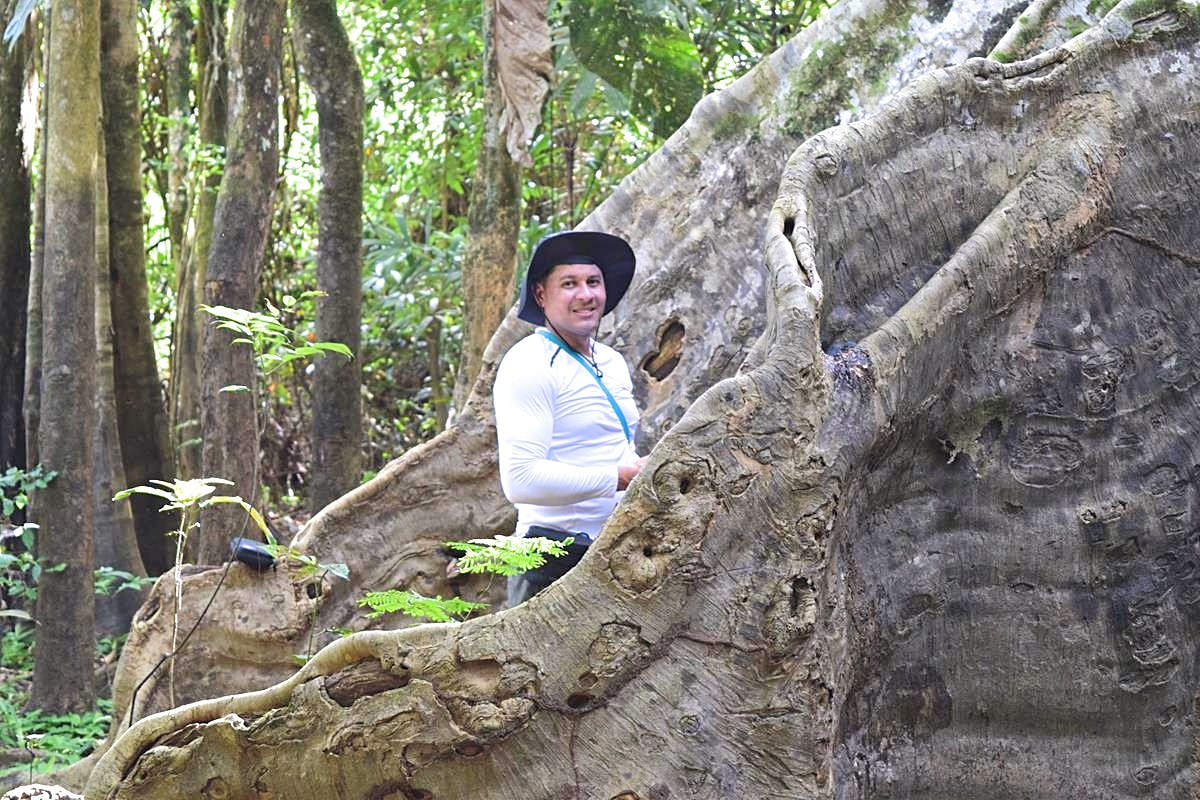 Flora en fauna Amazone regenwoud Colombia