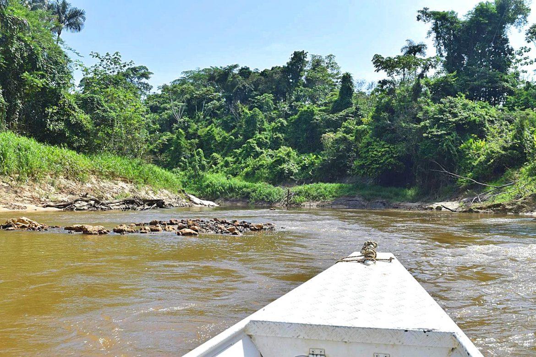 Ontdek het Amazone regenwoud Colombia Zuid-Amerika