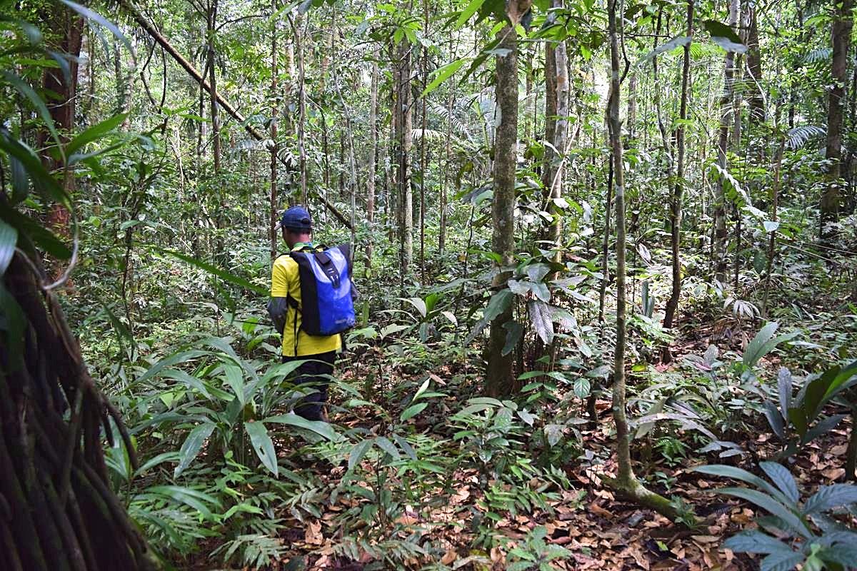 Rondreis Zuid-Amerika Amazone